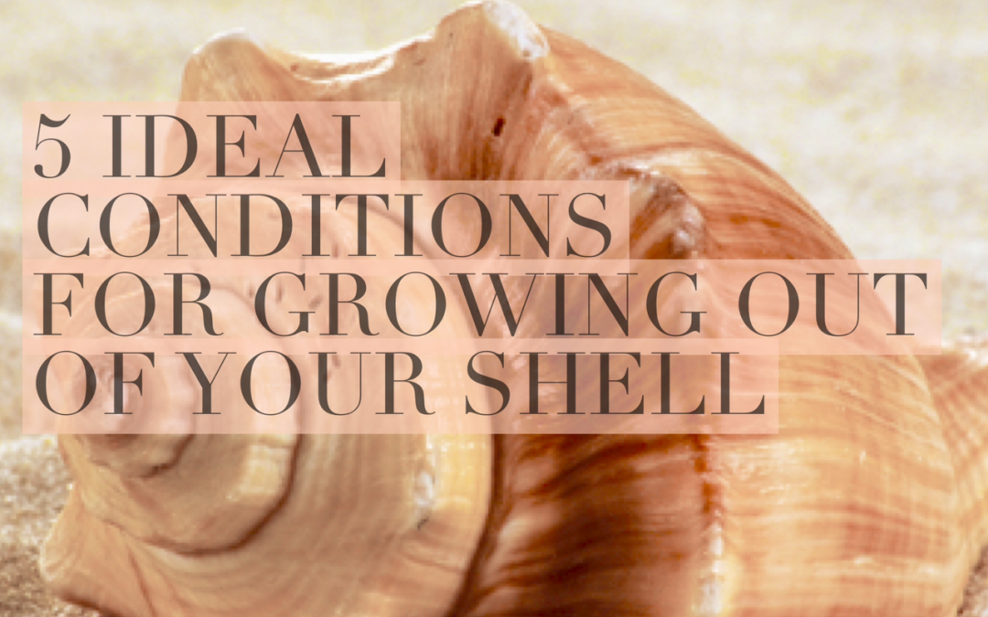5 Ideal Conditions for Growth